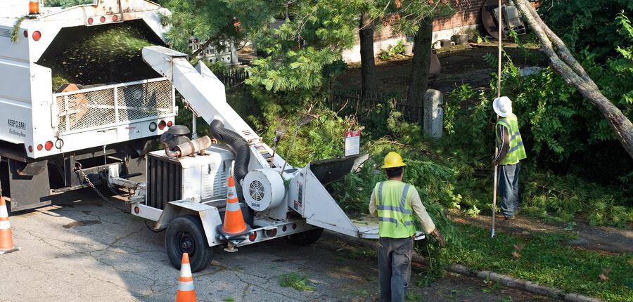 Arborist & Tree Trimming Services Insurance in Dallas, TX