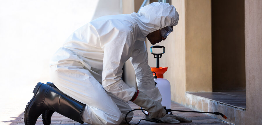 Pest Control Exterminator Insurance in Dallas, Texas