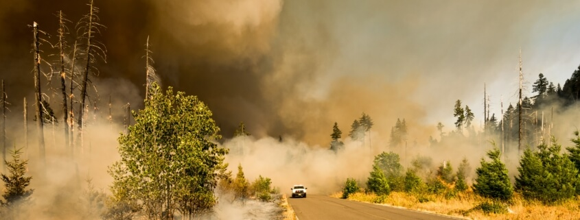 Insurance Coverage for Natural Disasters in Dallas, TX